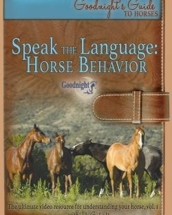 Speak the Language: Horse Behavior
