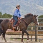 Keeping Your Horse Healthy Through The Stages Of Life Part 2: The Prime Time Horses
