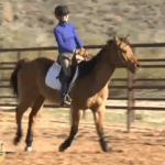 Episode 515 — Canter Right