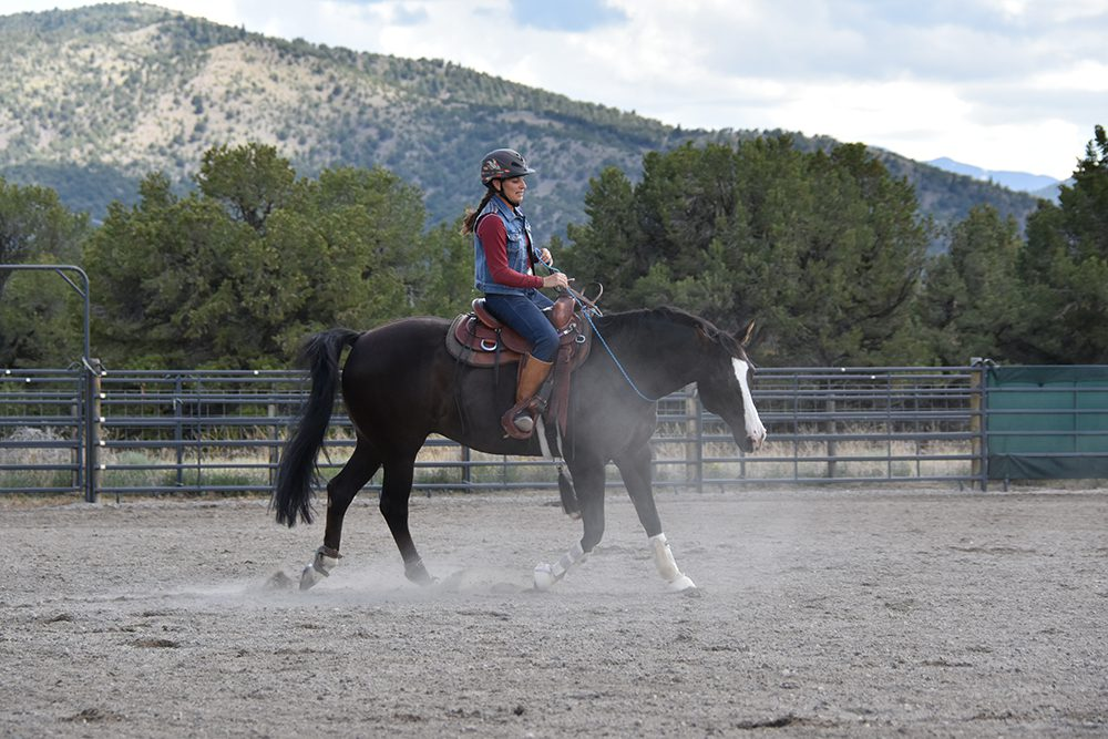 Julie riding Dually bridleless with a neck rope.