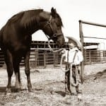 Sharing Your Passion For Horses With Kids
