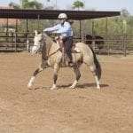 Mastering the Canter