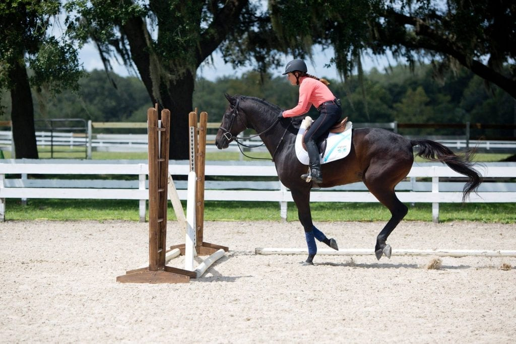 In Florida, Julie encourages this experienced horse to take jumps confidently—even in new places.  Photo by: The Whole Picture, LLC.