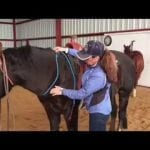 Riding Bridleless with a Neck Rope