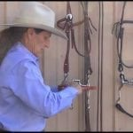 Myler Curb Bit: Assembling a Bit with a Curb Strap on a Western Headstall