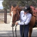 Myler 3-Ring Combination Bit: Adjusting Your New Bit with a Western Headstall