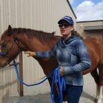 Daily Dose of Horsemanship Homework, Ground Manners #4: Head Lowering Cue