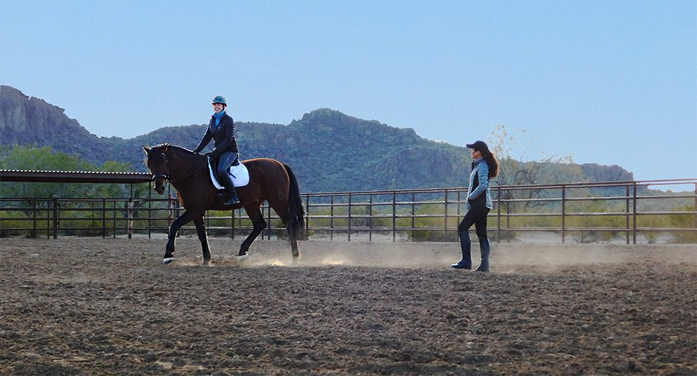Build Your Confidence with Horses Short Course