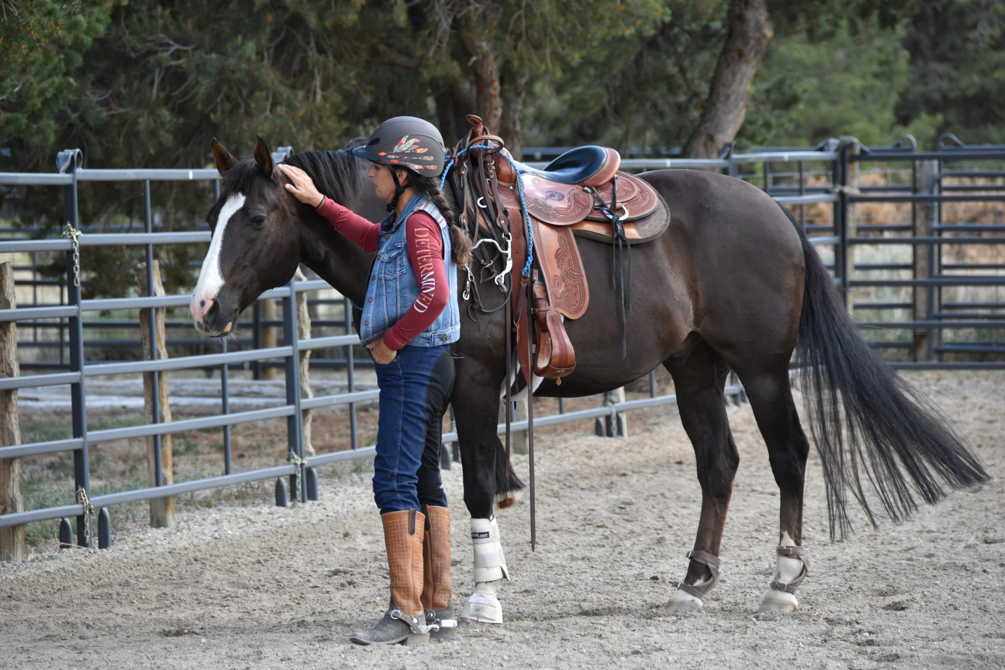 Cultivating a Connection with Horses