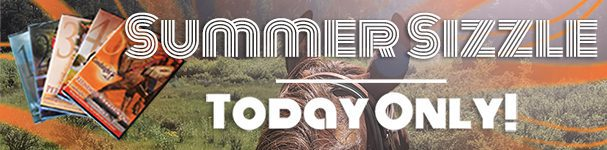 Summer Sizzle - Today Only!